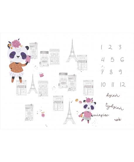 Panel na foto matę Panda Paryż